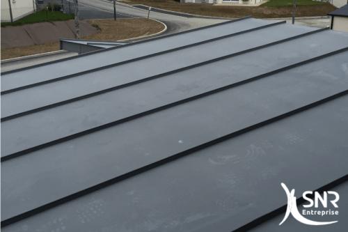 agrandissement maison laval zinc SNR Entreprise 53 35 Rennes Laval Saint-Malo